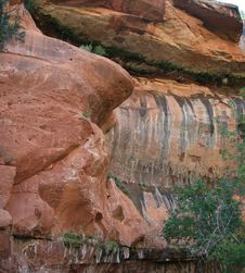 Free Zion National Park Royalty Free Stock Photo - 6236715
