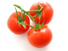 Free Red Tomato Stock Image - 6238411