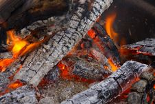 Burning Campfire With Coals Royalty Free Stock Image