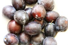 Free Plums Royalty Free Stock Images - 6239569