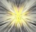 Free Yellow Vortex Stock Photography - 6248052