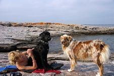 Free Dog Days Of Summer Stock Photo - 6240500