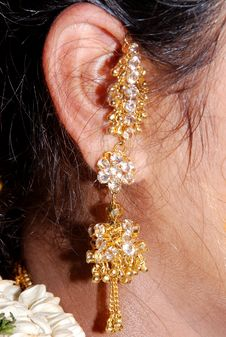 Free Earings Stock Images - 6241404