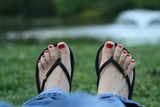 Red Toe-nails, Woman Feet Royalty Free Stock Images