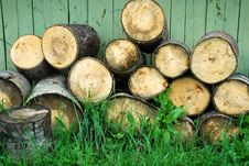Free Cut Birch Timber Royalty Free Stock Images - 6245699