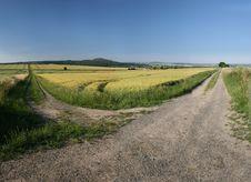 Barley Field In Germany, Gerstenfeld Bei Kassel Stock Image
