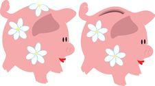 Free Piggy Stock Photos - 6247563