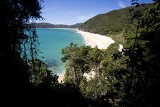 Lonely At Abel Tasman Nationalpark Royalty Free Stock Image