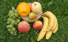 Fruit In A Basket In A Grass Stock Photos