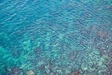 Free Sea Water Stock Image - 6249501