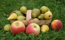 Pears And Apples Royalty Free Stock Photos