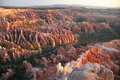 Free Bryce Canyon National Park Stock Photo - 6255450