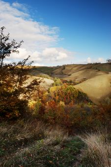 Fall Colors Landscape Royalty Free Stock Photography