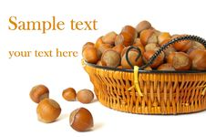 Free Isolated Wood Nuts In A Basket Stock Photo - 6251480