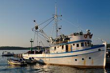 Fish Boat Royalty Free Stock Image