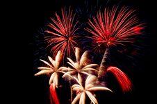 Free Many Fireworks Explodes Stock Photos - 6254933
