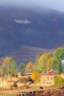 Free Altiplano Sunlight Stock Photography - 6254942