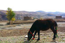 Free Altiplano Village Royalty Free Stock Photo - 6254945