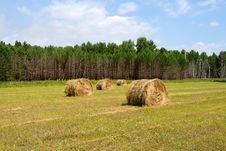 Free Field With Haystacks Royalty Free Stock Images - 6255069