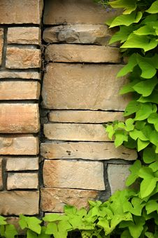Free Flagstone Wall With Climbing Ivy Stock Image - 6255331
