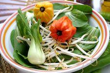 Free Pak Choi Vegetables Royalty Free Stock Photos - 6255538
