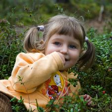 Free Girl In The Forest Royalty Free Stock Photography - 6256697