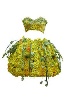 Free Flower Dress Stock Photo - 6256950