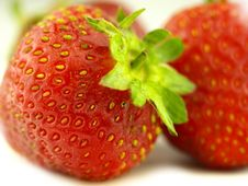 Free Strawberry In Zoom Stock Image - 6257151