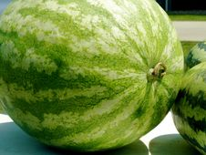 Free Watermelon Royalty Free Stock Photo - 6259225