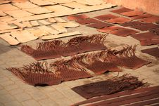 Free Leather Drying Stock Photo - 6259310