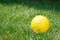 Free Yellow Ball In Grass Stock Photography - 6261652