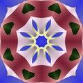 Free Simple Compass Star Mandala Royalty Free Stock Photo - 6269135