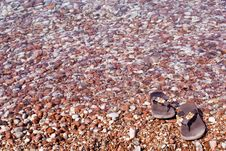 Free Gravel Beach Stock Photography - 6263192