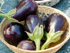 Free Eggplants Royalty Free Stock Image - 6263316