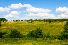 Free Grassland And Cloudy Sky Royalty Free Stock Image - 6263626