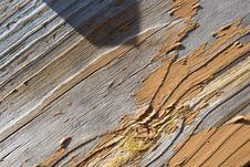 Wood Grain Stock Images