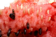 Water Melon Closeup Stock Image