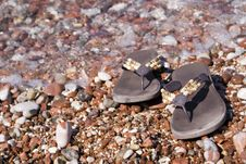 Free Gravel Beach Stock Image - 6264091