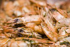 Free Sea Food Stock Photography - 6264152