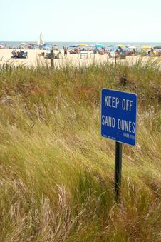 Free Grassy Sand Dune Stock Images - 6264554