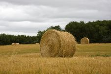 Free Straw Bales Stock Images - 6264964