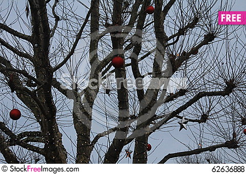 Free Decorations On The Tree In The Xmas Market Royalty Free Stock Photos - 62636888