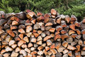 Free Pile Of Logs Stock Photo - 6277610