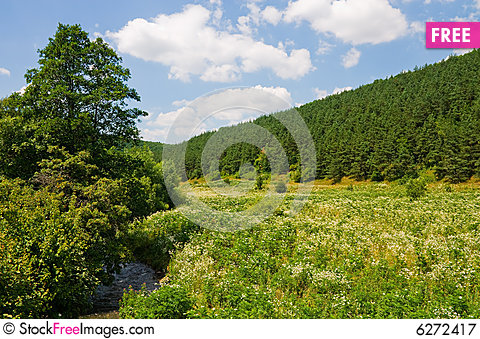Free Countryside In Ukraine Royalty Free Stock Photography - 6272417