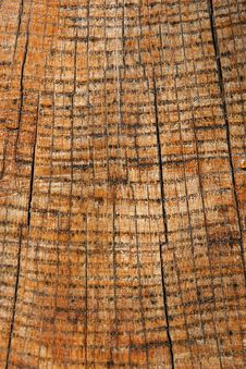 Free Wooden Texture Close Up Royalty Free Stock Photos - 6270038