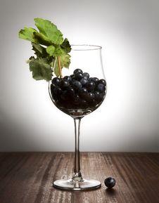 Free Grape Stock Photos - 6271053