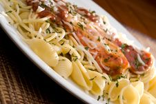 Free Chicken Parmesan And Noodles Royalty Free Stock Photography - 6275077