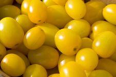 Free Yellow Tomatoes Stock Image - 6275811