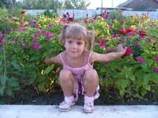 Child In Flowers Stock Image