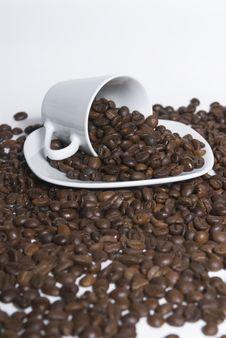 Free Coffee Stock Photos - 6276783